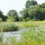 golf-maritim-golfpark-ostsee